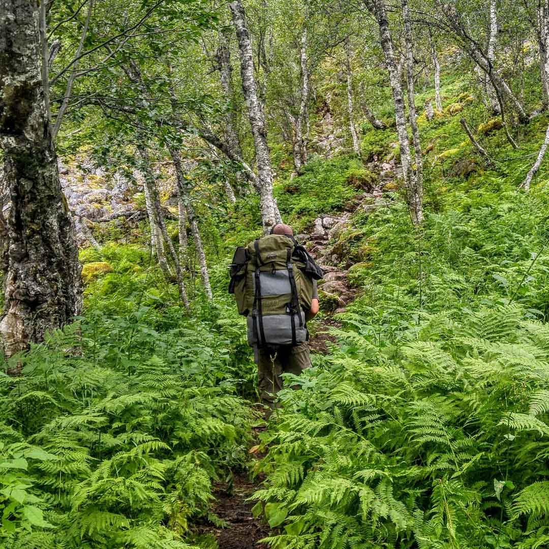norges nasjonalparker rohkunborri reisa anderdalen 03